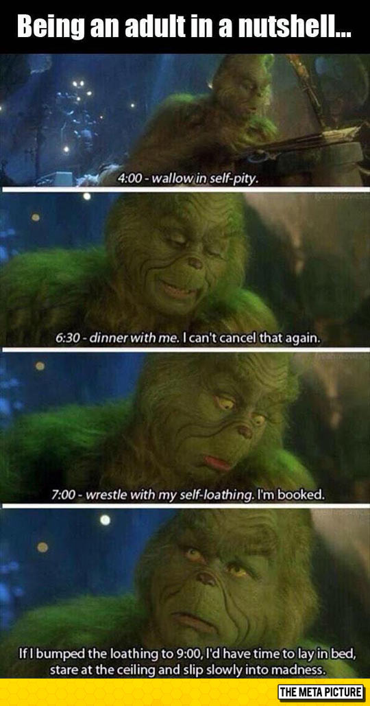 Pretty Much What Adulthood Is Like