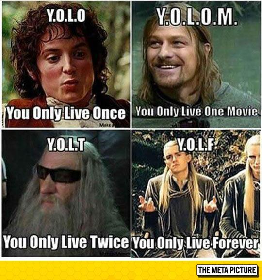 funny-YOLO-Lord-Rings-Gandalf