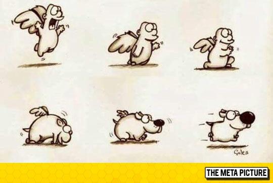 funny-angel-transforms-dog-comic