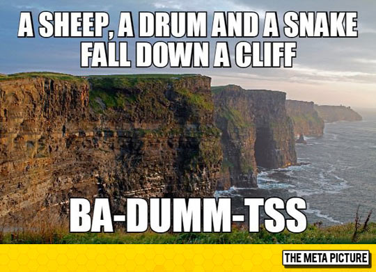funny-cliff-ocean-sheep-drum-snake