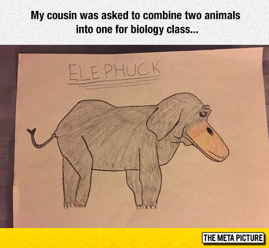 Two Animals Combined