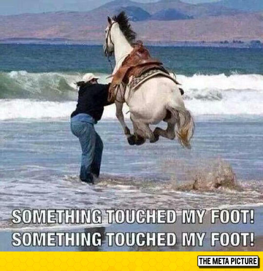 When You Step On Something In The Ocean