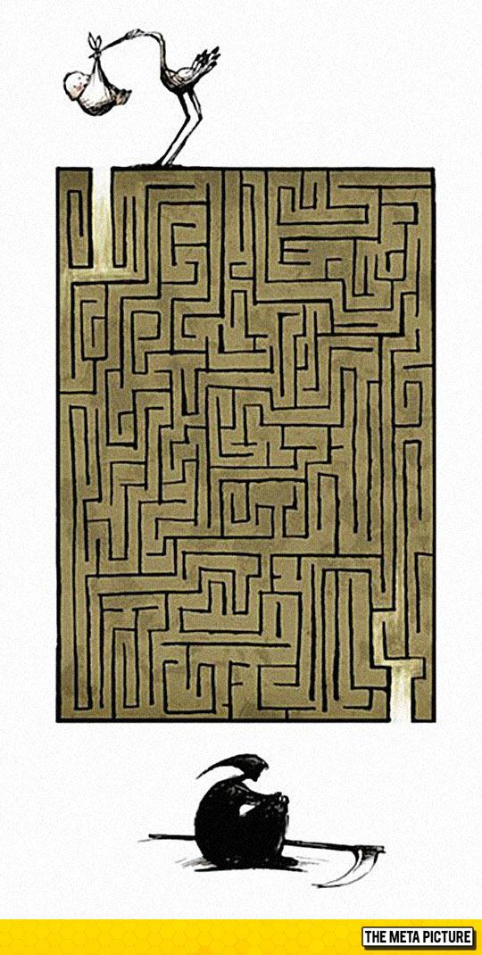 funny-maze-stork-life-death-art