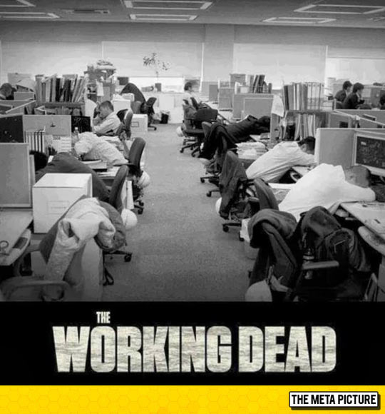 funny-people-working-sleeping-job-tired
