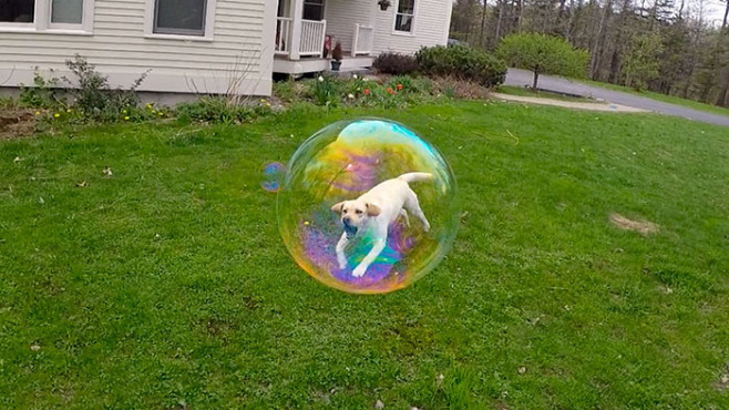 funny-perfectly-timed-photos-25__700