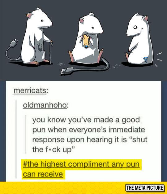 Pun Compliment