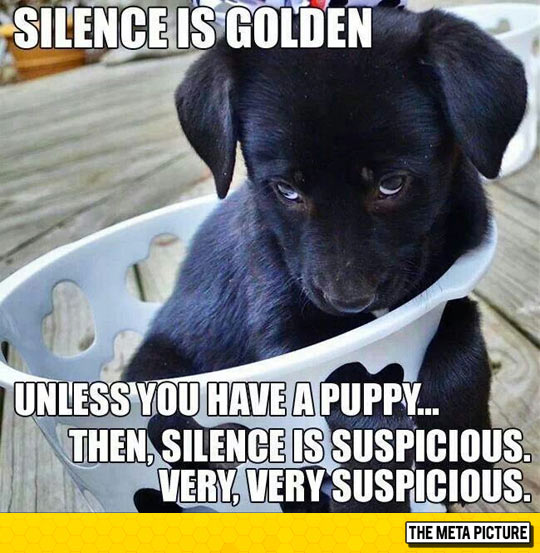 Silence Is Golden, Unless...