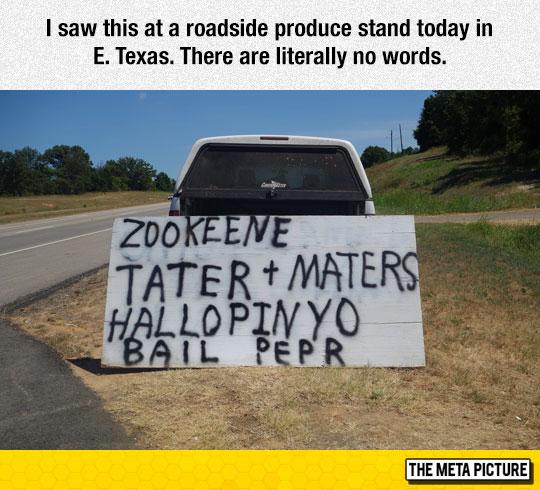 funny-sign-Texas-truck-road-summer