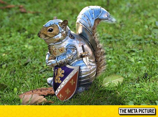 funny-squirrel-armor-war-photoshop