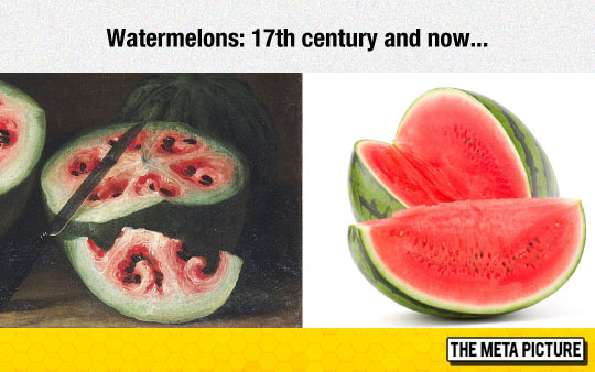 Wow, Watermelon Has Really Changed