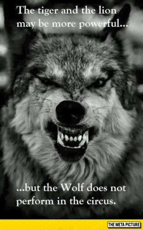 The Mighty Wolf