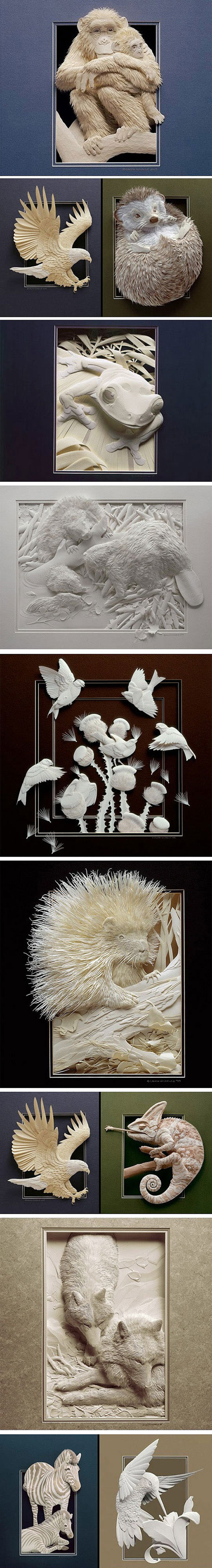 Captivating Paper Art By Calvin Nicholls1