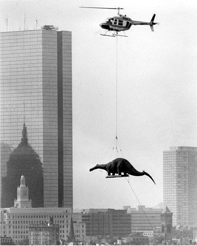 Delivering a brontosaurus to the Museum of Science in Boston (1984)