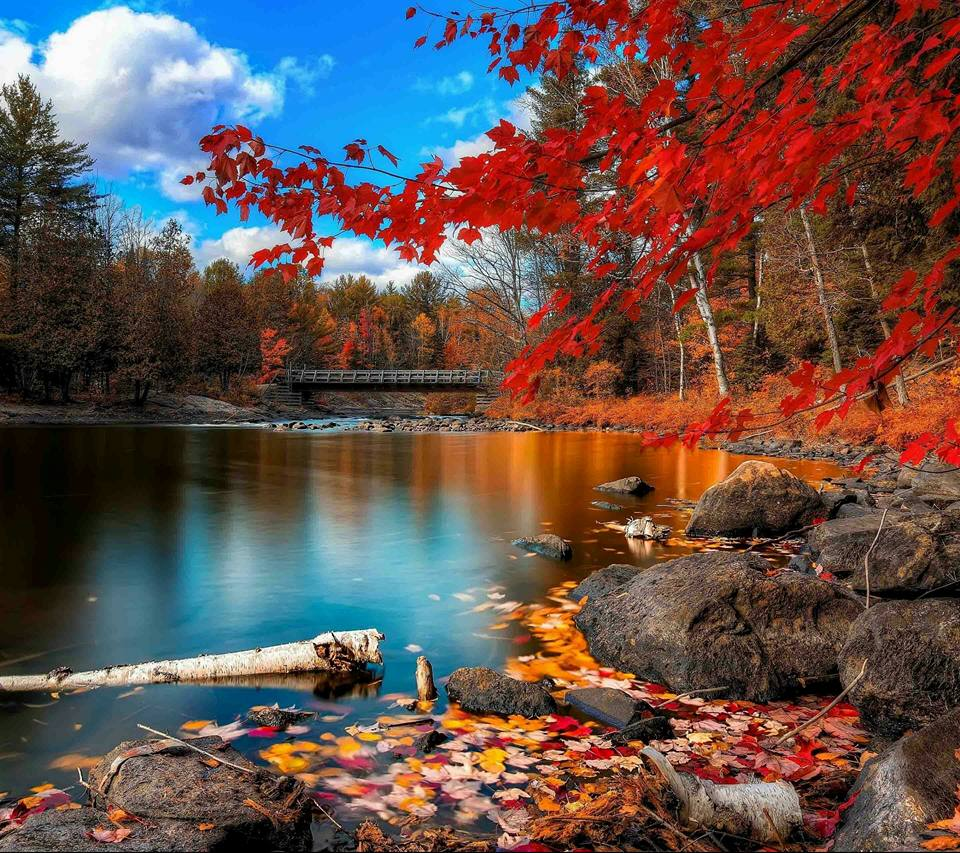 Fall in the Northeast USA