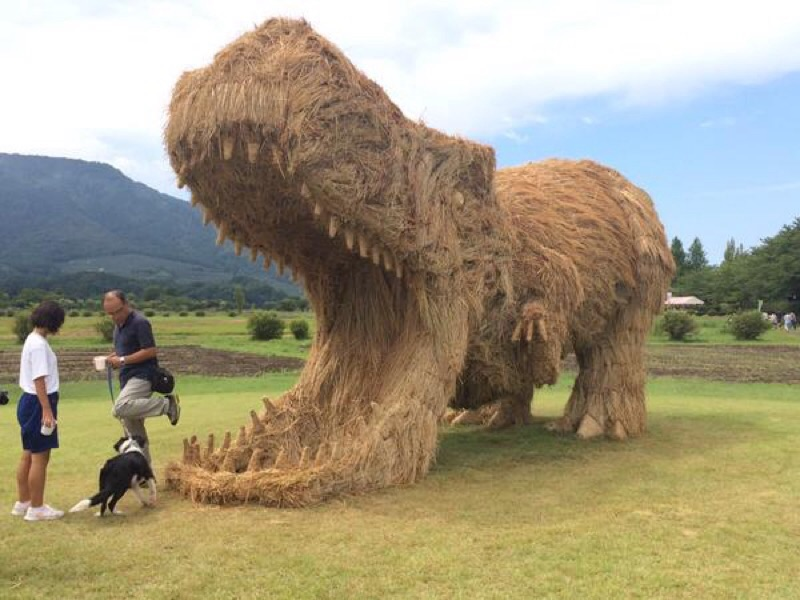 T-Rex made from straw in Japan.
