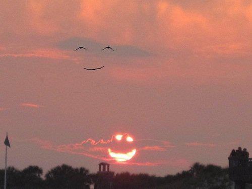 When the sun smiles, the birds smile back!
