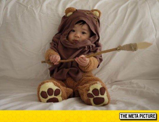 The Cutest Ewok Ever