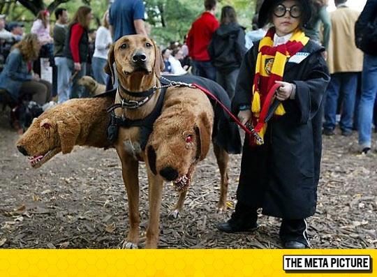 cool-Harry-Potter-three-headed-dog-costume