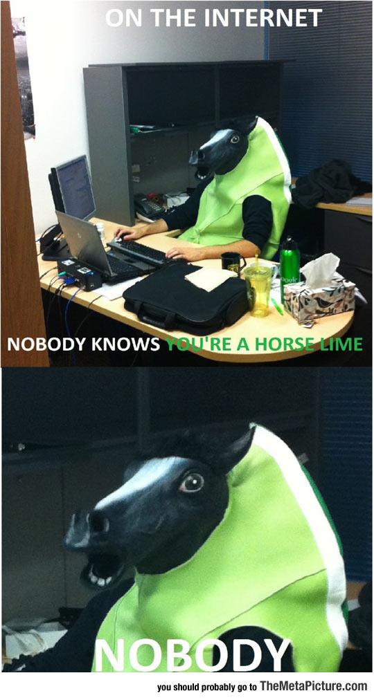 cool-Horse-mask-costume