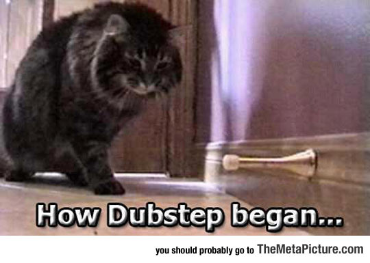 cool-cat-dubstep-door-stopper