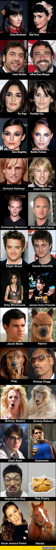 cool-celebrity-look-alikes