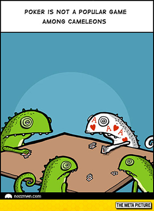 cool-chameleons-playing-cards