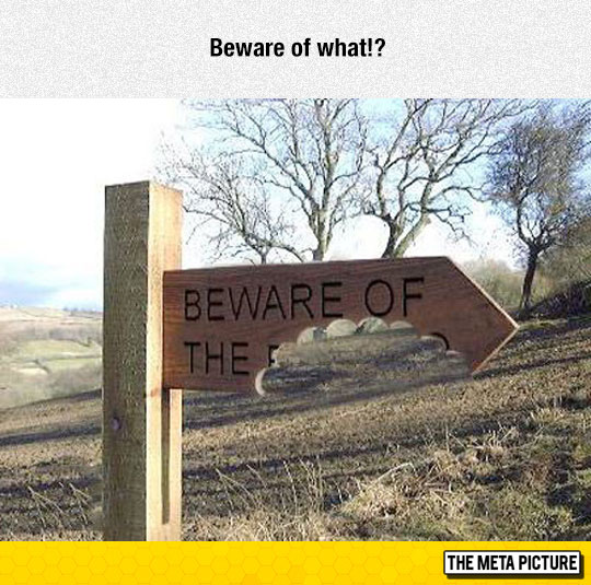 cool-sign-beware-of-the-dog