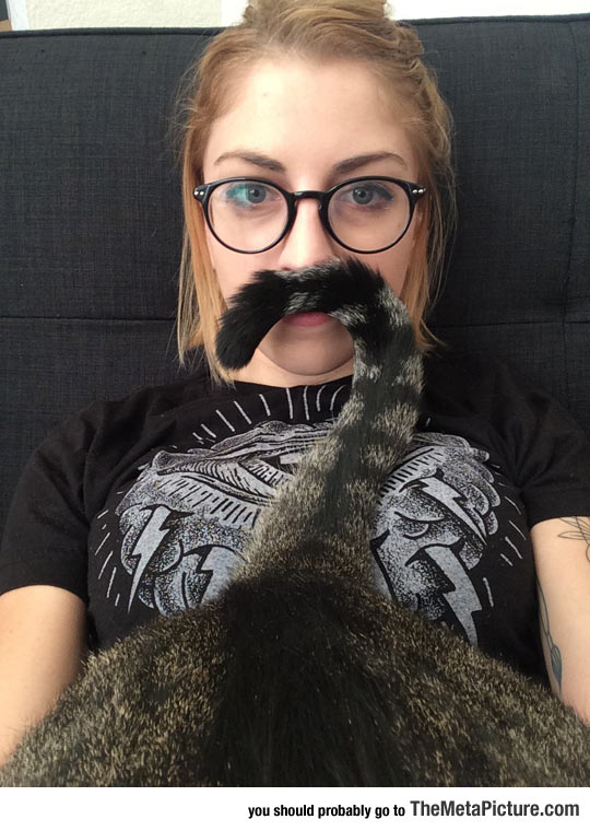 Fabulous Meowstache