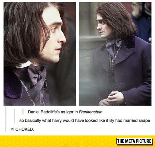 An Alternative Harry Potter