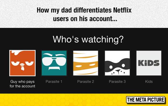 Netflix Users