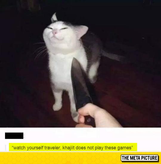 funny-cat-knife-face-cute