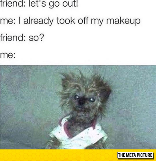 funny-dog-makeup-angry-face