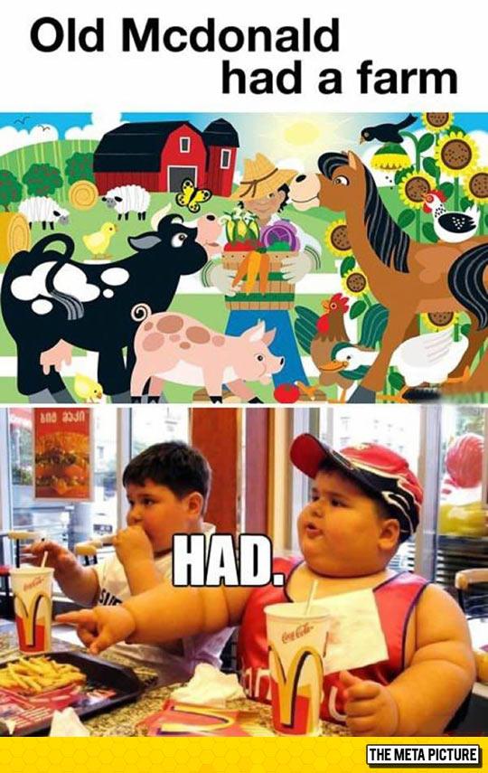 funny-horses-kid-McDonalds-burger