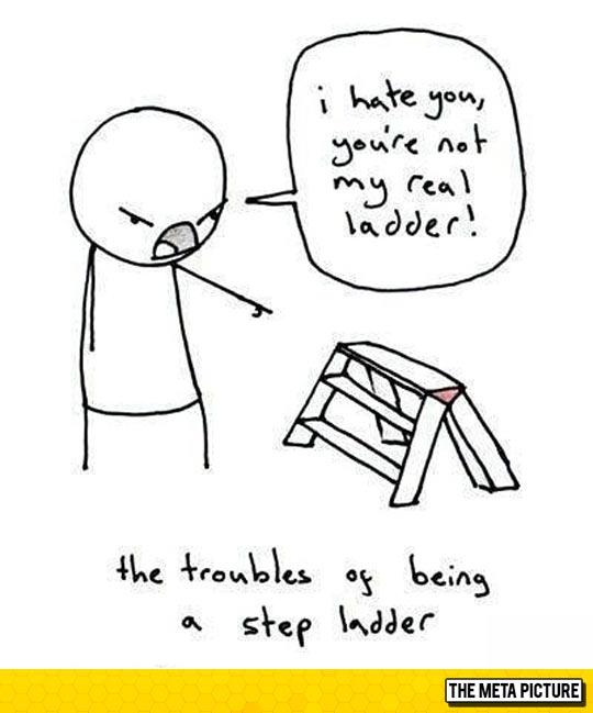 Ladder Problems