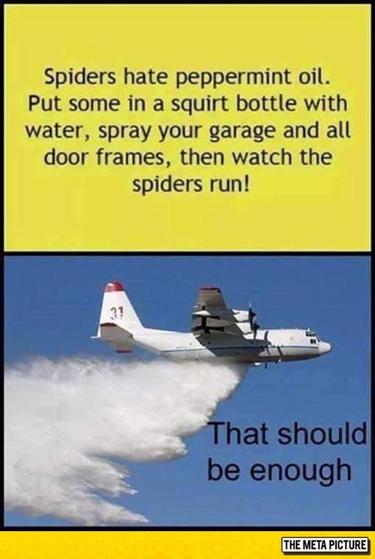 Proper Solution