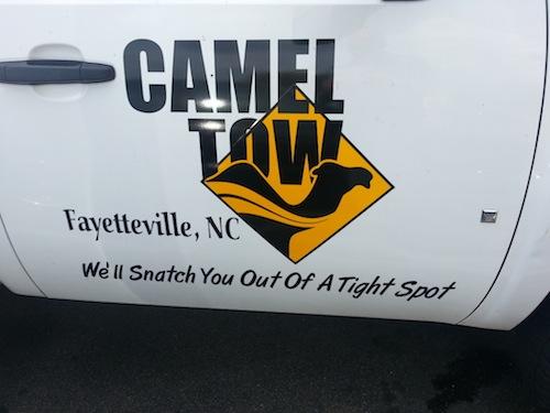 pun-names-camel