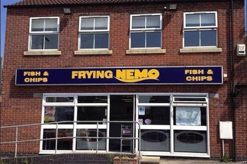 pun-names-nemo