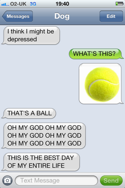 text_from_my_dog_7