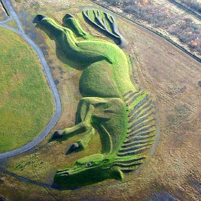 Amazing Horse Field Design.