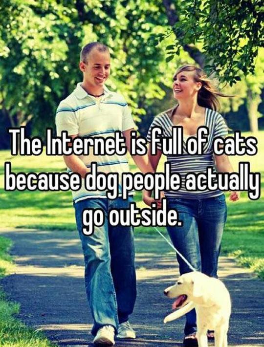 Explains The Internet