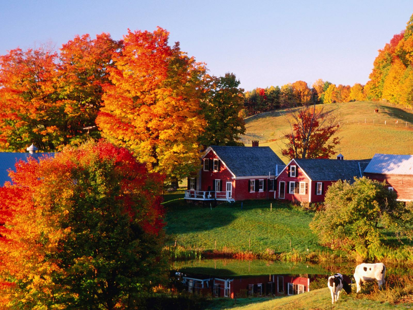 October in New England, USA.
