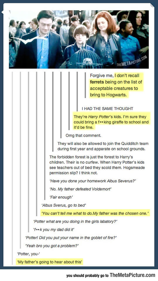 Being The Son Of Harry Potter
