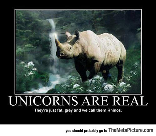 Truth About Unicorns