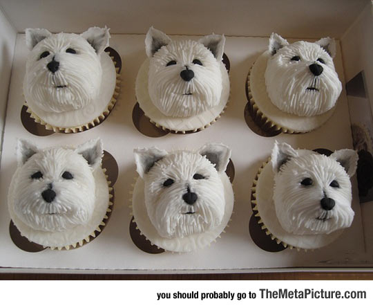 cool-Westie-cupcakes-dogs-ideas