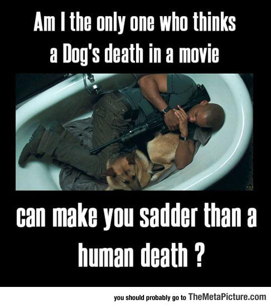 cool-Will-Smith-sleeping-dog-bathtub