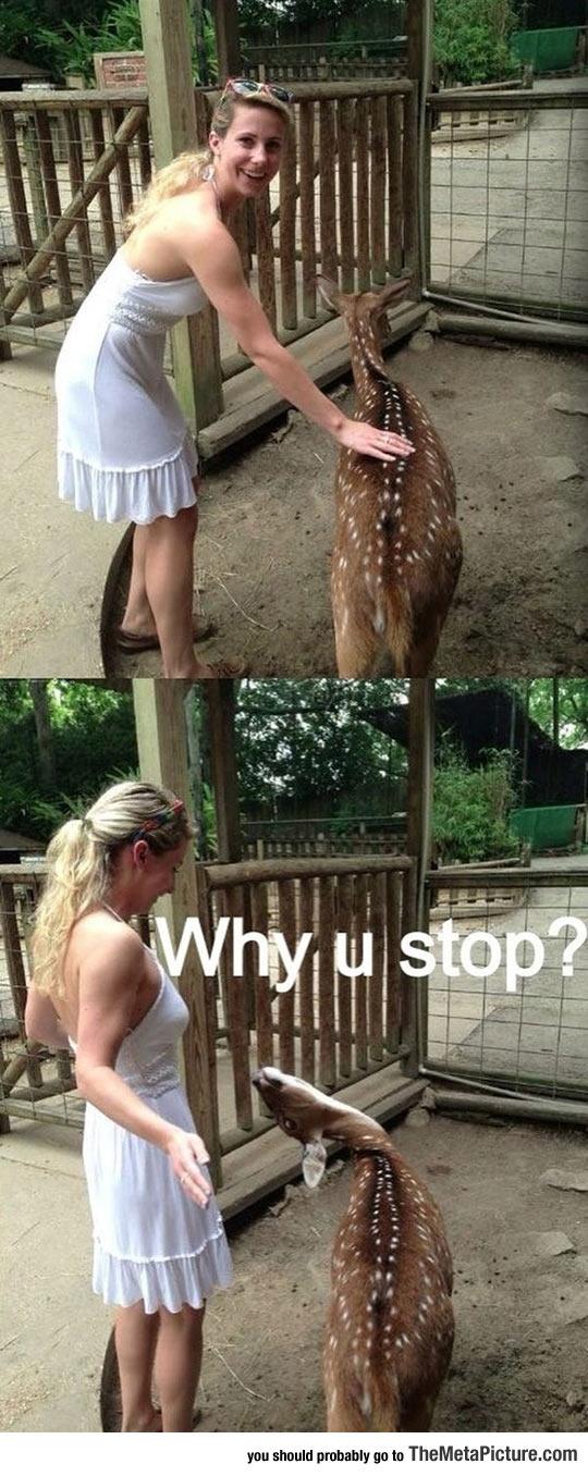 Wait, Why U Stop?