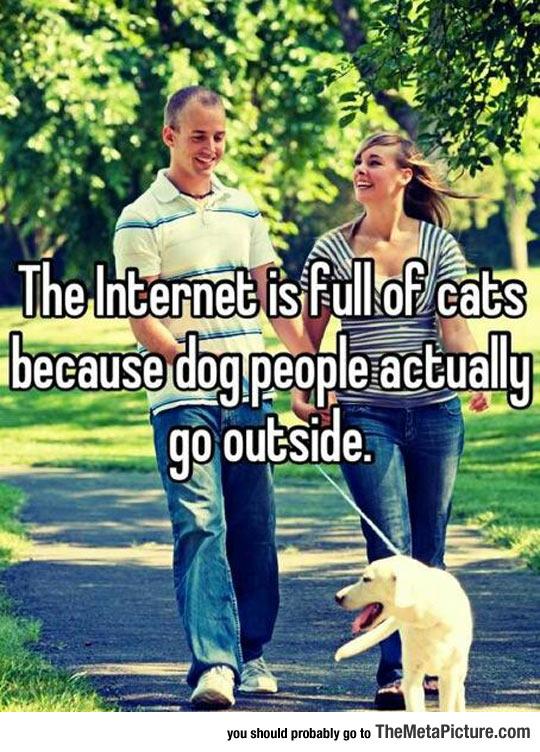 It Explains The Internet