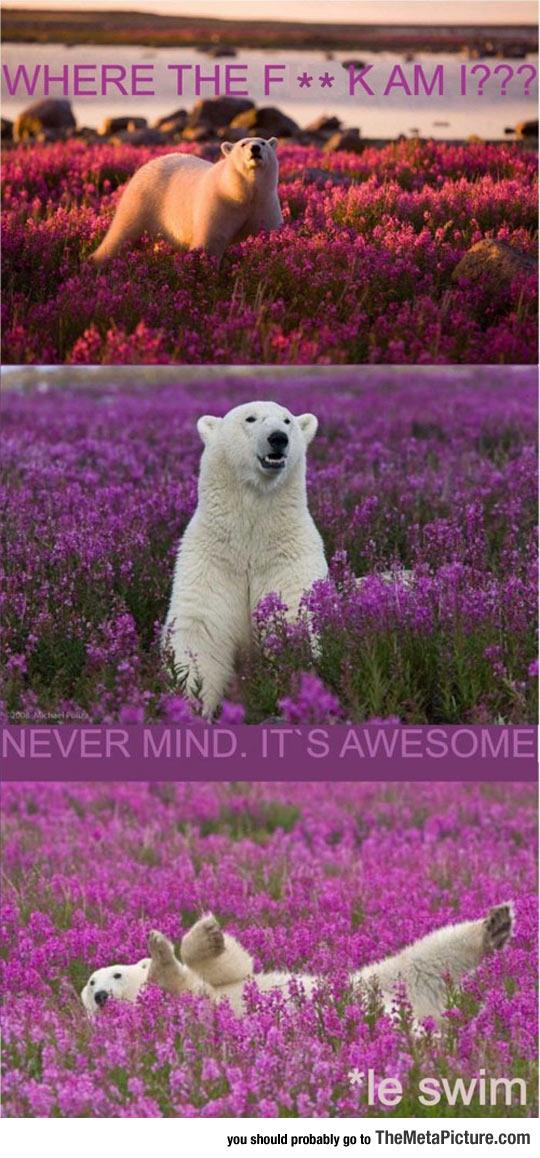 cool-polar-bear-tripping-flowers