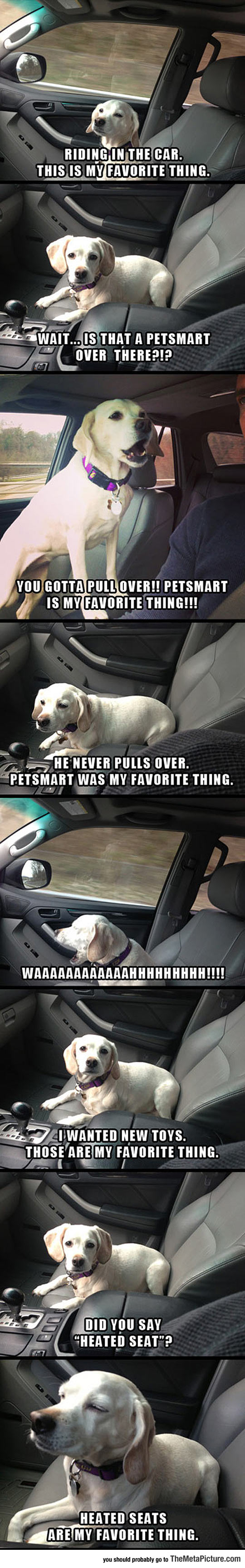 cool-puppy-car-seat