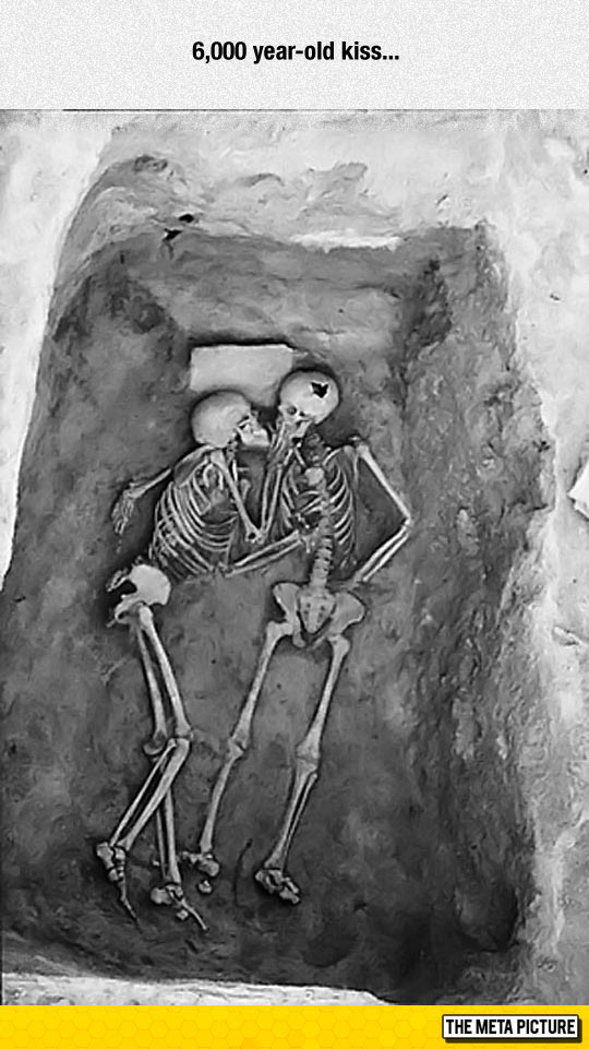 cool-skeletons-kissing-fossils